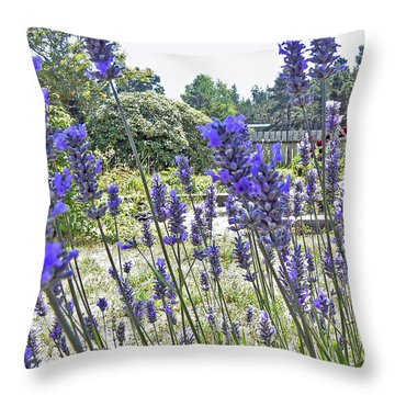 Lavender Spears Throw Pillow by Pamela Patch