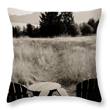Lawn Chair View Of Field Throw Pillow by Darcy Michaelchuk