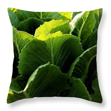 Layers Of Romaine Throw Pillow by Angela Rath