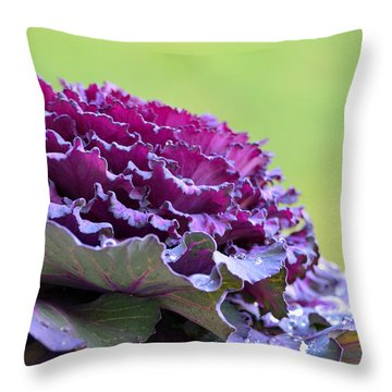 Layers Of Wet Beauty Throw Pillow by Sandi OReilly