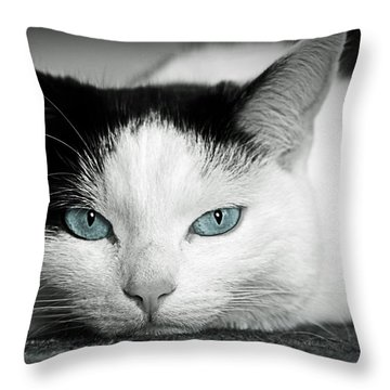 Lazy Cat Throw Pillow by Claudia Moeckel