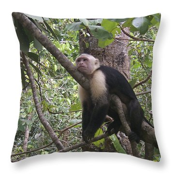 Lazy Day Throw Pillow by David Gleeson