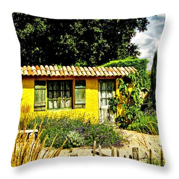 Le Jardin De Vincent Throw Pillow by Chris Thaxter