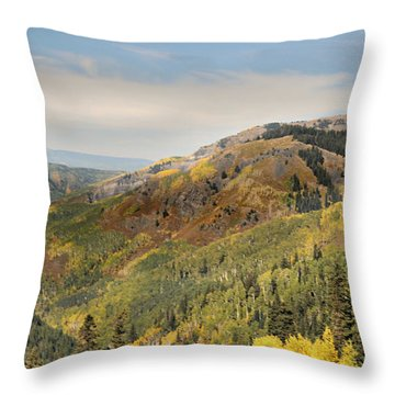 Lead King Basin Road 2 Throw Pillow by Marty Koch