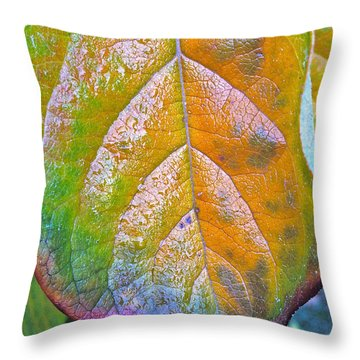 Throw Pillow featuring the photograph Leaf by Bill Owen