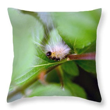 Leaf For One Throw Pillow