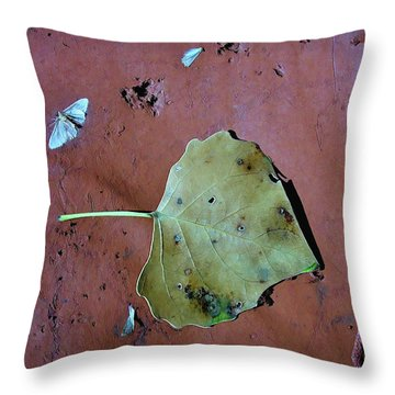 Throw Pillow featuring the photograph Leaf Libretto by Britt Runyon