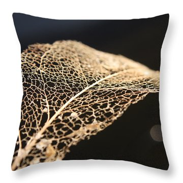 Throw Pillow featuring the photograph Leaf Skeleton by Cathie Douglas