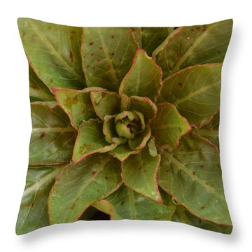 Leaf Star Throw Pillow