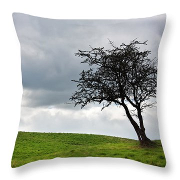 Leafless  Throw Pillow by Semmick Photo
