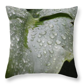 Throw Pillow featuring the photograph Leafy Greens by Tiffany Erdman