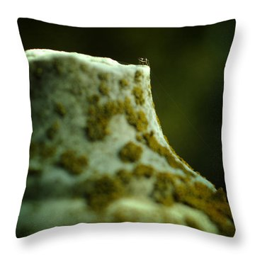 Leap Of Faith Throw Pillow by Rebecca Sherman
