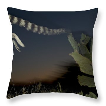 Leaping Ring-tailed Lemur  Throw Pillow by Cyril Ruoso