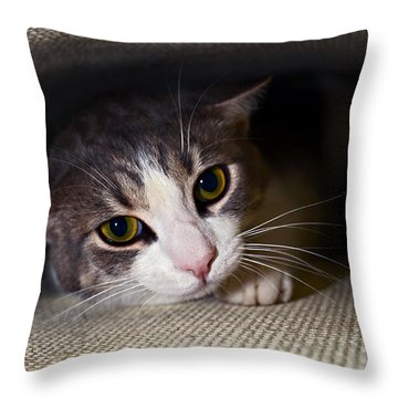 Leave Me Alone Throw Pillow by Susan Leggett