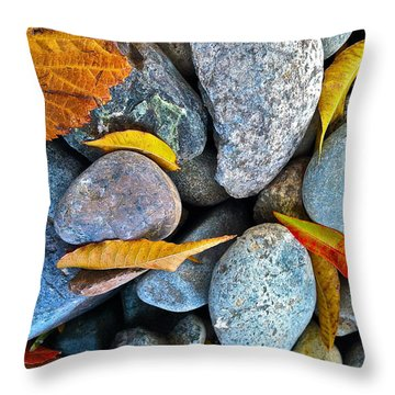 Throw Pillow featuring the photograph Leaves And Rocks by Bill Owen