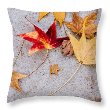 Leaves On The Sidewalk Throw Pillow