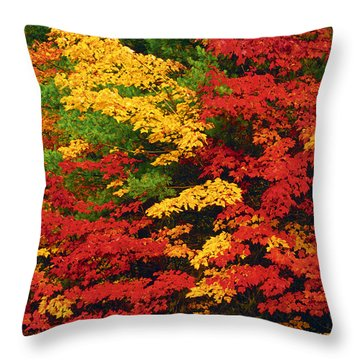Leaves On Trees Changing Colour Throw Pillow by Mike Grandmailson