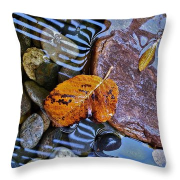 Throw Pillow featuring the photograph Leaves Rocks Shadows by Bill Owen