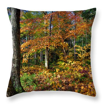 Leaving Cary Lake Throw Pillow by David Patterson