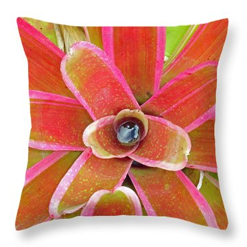 Leaving Honolulu Throw Pillow