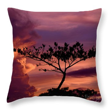 Leeward Oahu Throw Pillow