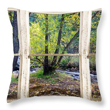 Left Hand Creek Rustic Window View Colorado Throw Pillow by James BO  Insogna