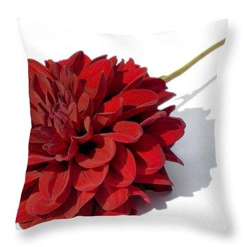 Leggy Dahlia  Throw Pillow by Susan Smith