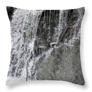 Throw Pillow featuring the photograph Let It Flow by Tiffany Erdman