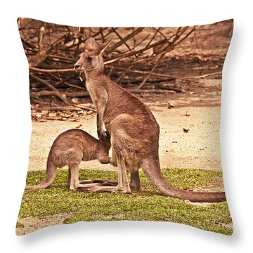 Let Me Back In Throw Pillow by Bob and Nancy Kendrick