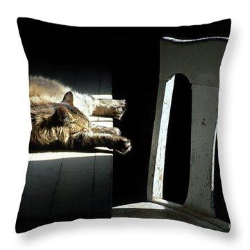Let Sleeping Cats Lie Throw Pillow by Bob Christopher