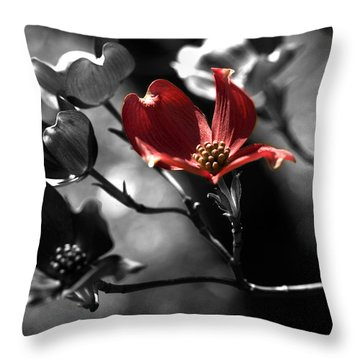 Let There Be Color Throw Pillow by Bonnie Bruno