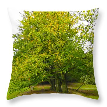 Lets Take A Seat Here Throw Pillow by Go Van Kampen