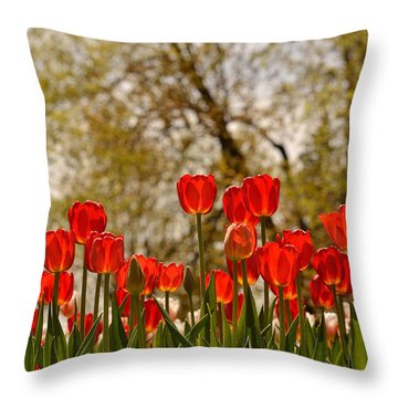 Liberation Throw Pillow