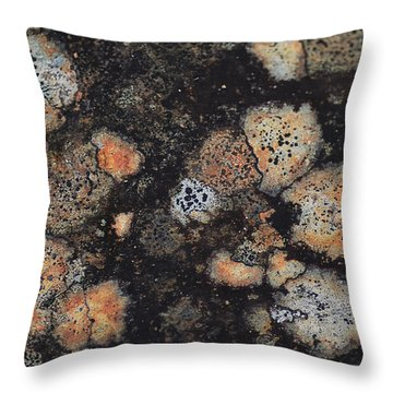 Lichen Abstract Throw Pillow by Susan Capuano