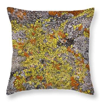 Lichens Throw Pillow by Heidi Smith