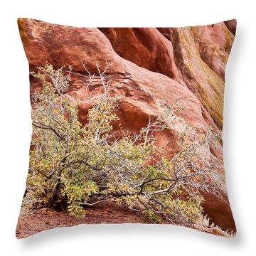 Life At Red Rocks Throw Pillow