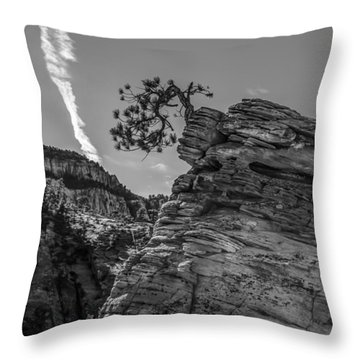 Life On The Edge Throw Pillow by George Buxbaum