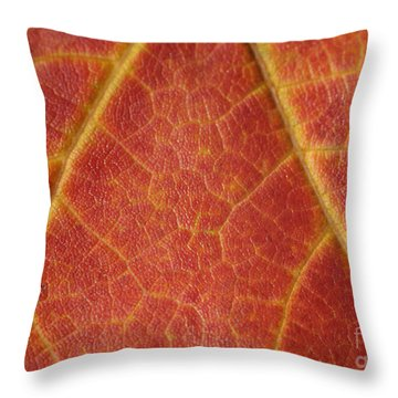 Lifeblood Throw Pillow by Luke Moore