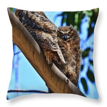 Lifes A Hoot Throw Pillow