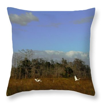 Lifes Field Of Dreams Throw Pillow