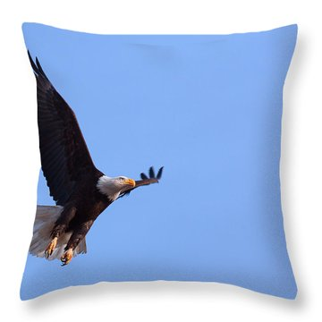 Throw Pillow featuring the photograph Lift by Jim Garrison