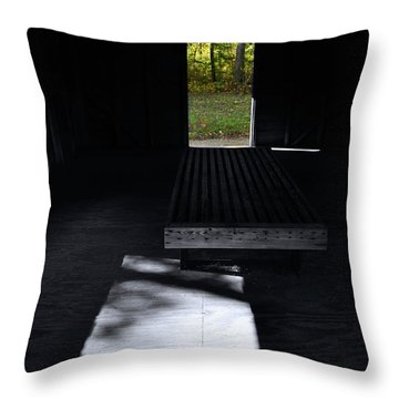 Light Throw Pillow by Joanne Brown