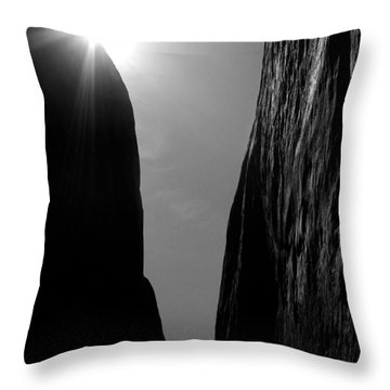 Throw Pillow featuring the photograph Light Of Day by Vicki Pelham