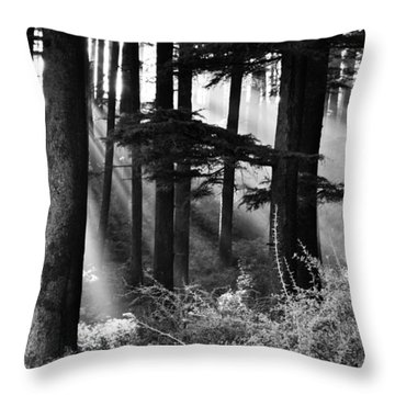 Throw Pillow featuring the photograph Light Through The Trees by Don Schwartz