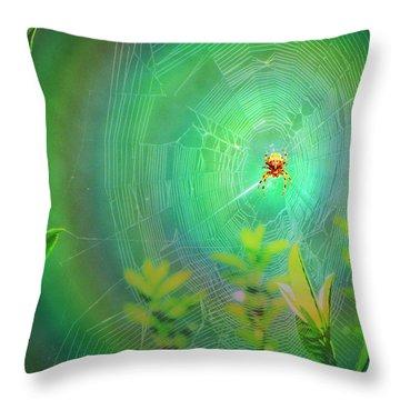 Lightning Spider Throw Pillow by Helmut Rottler