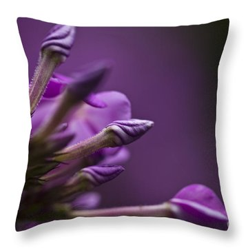 Lilac Spirals. Throw Pillow by Clare Bambers