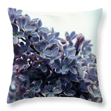 Lilacs Throw Pillow by Janice Drew