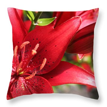 Throw Pillow featuring the photograph Lilies In Red by Laurel Talabere