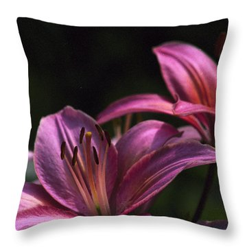 Throw Pillow featuring the photograph Lilies Of The Field by Wanda Brandon