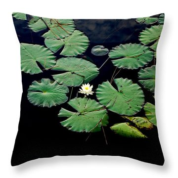 Lily Alone Throw Pillow by May Photography